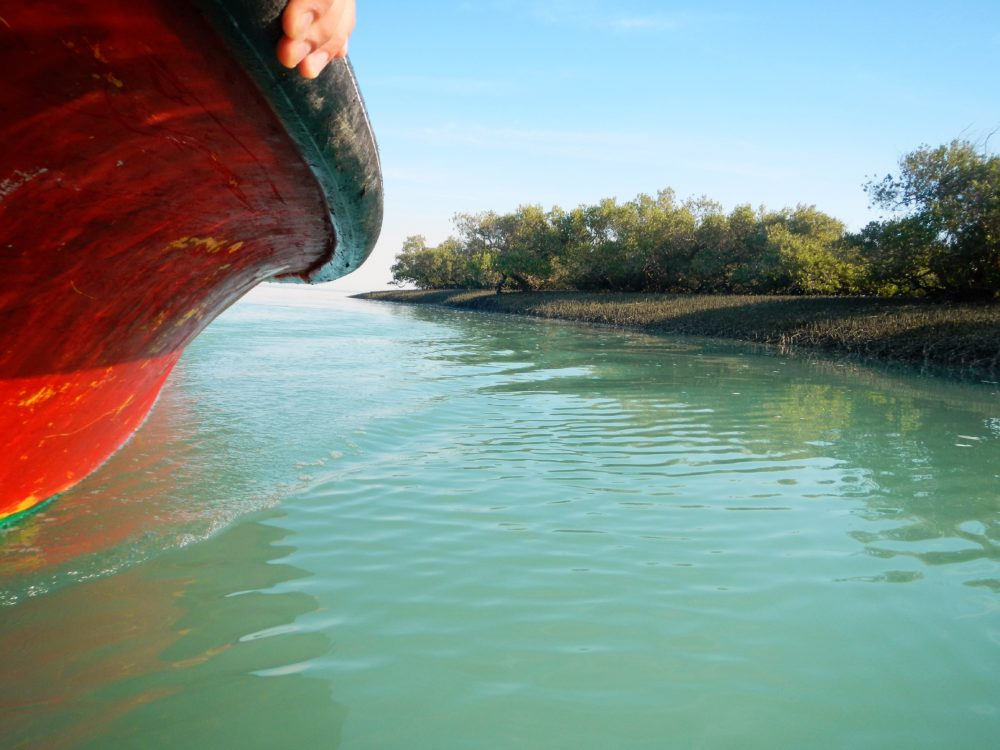 Stop four: mangrove forests around Laft