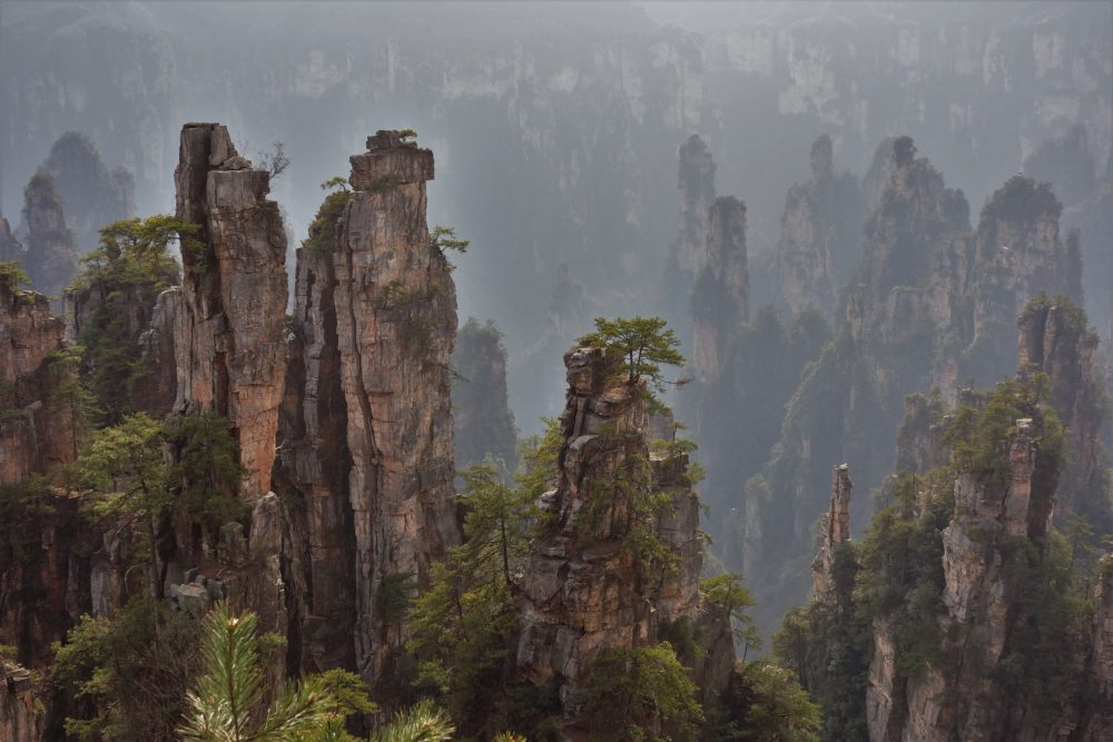 The mistic Zhangiajie forest park in Wulyngyuan scenic area. Feel like you've seen it before? Yes, it's the Pandora from Avatara :)