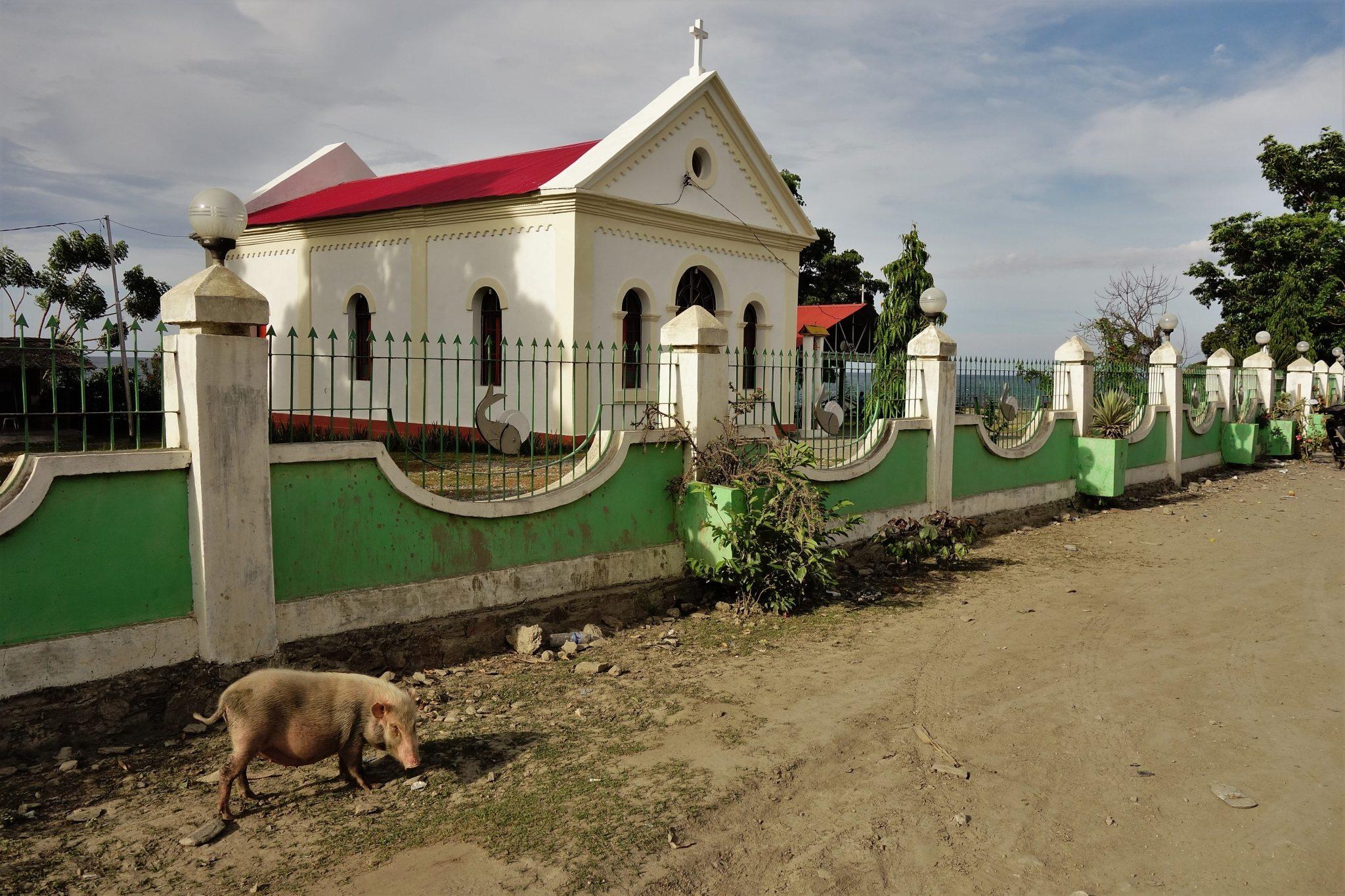 housesitting w Timorze Wschodnim