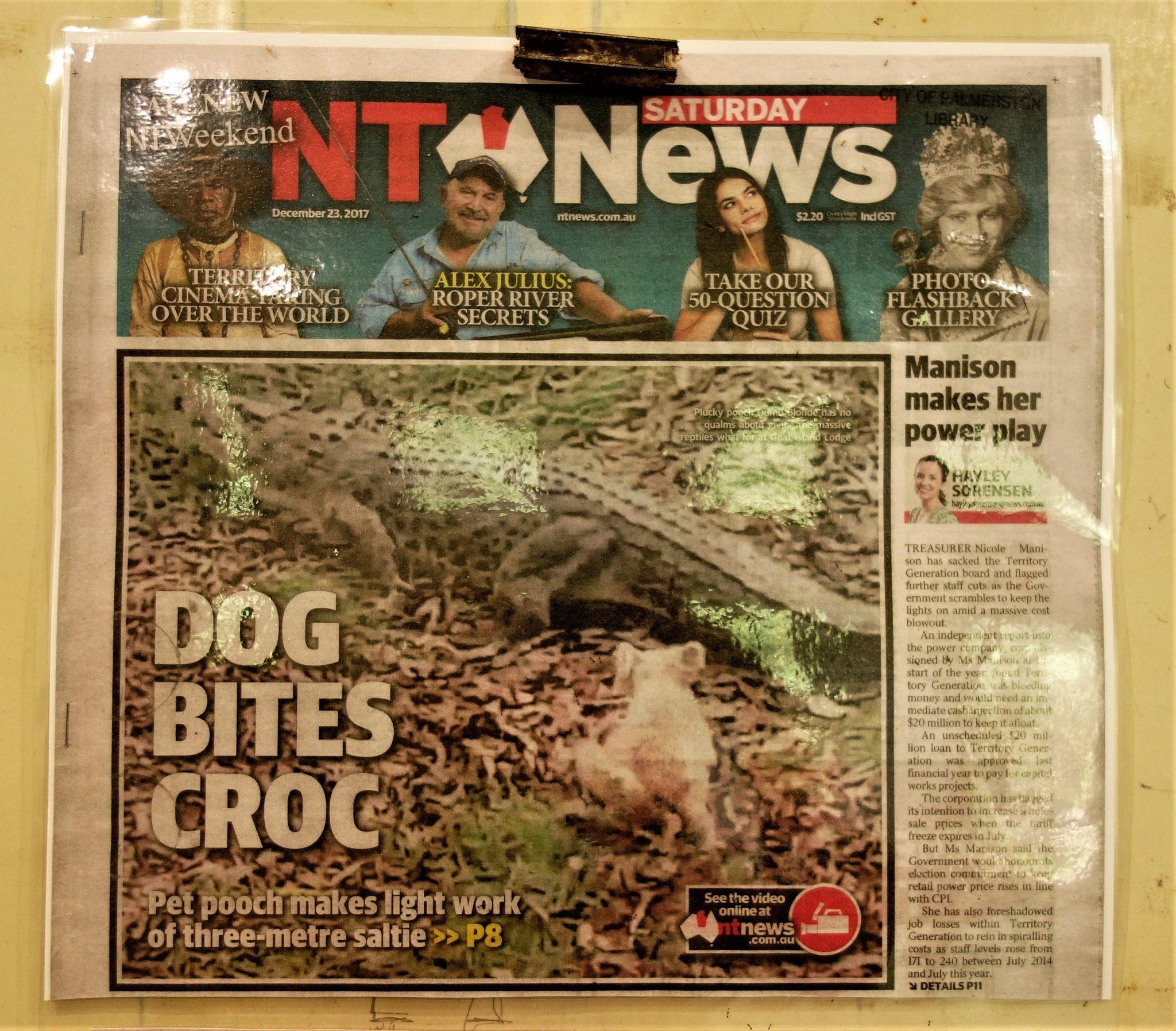 polowanie na krokodyle