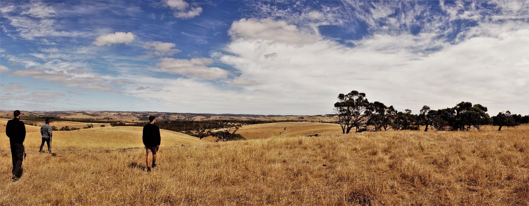 życie Południowej Australii