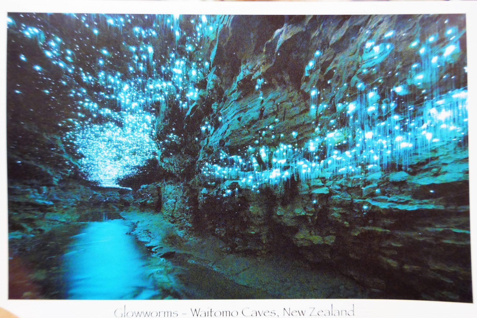 jaskinia waitomo